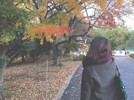 村山菜穂さんの写真